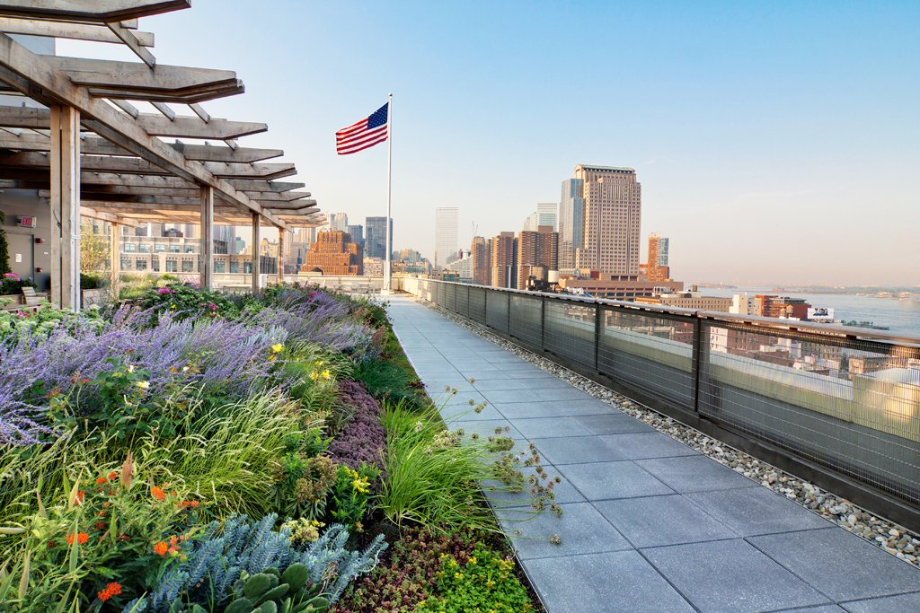 Day view of green roof at 250 Hudson Street